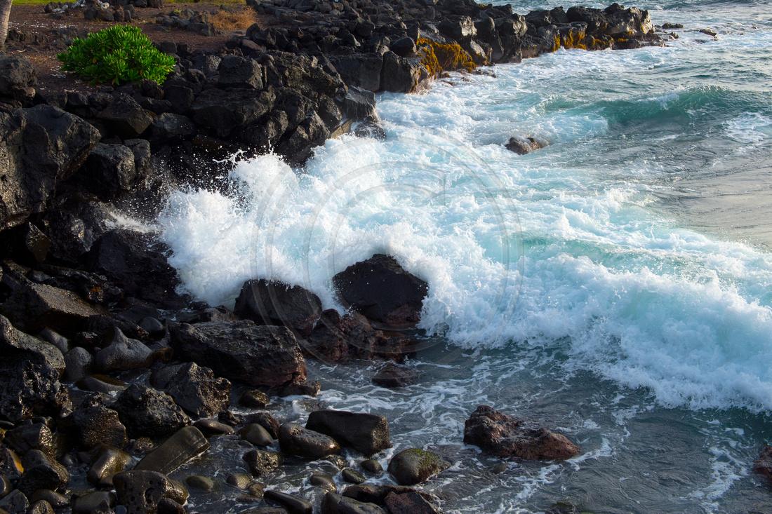 84-19 Pushing Back Hawaii